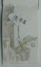 skizzenb-1-orchidee-1991
