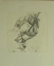 bach-zeichnung